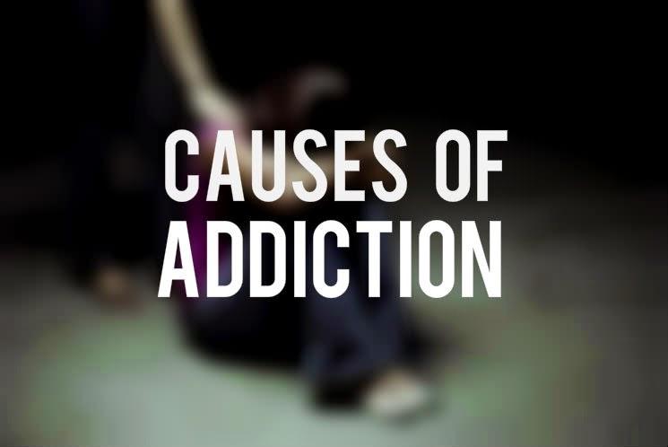 fbcaa-causes-of-addiction_mini