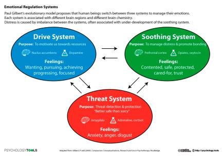 emotional_regulation_systems