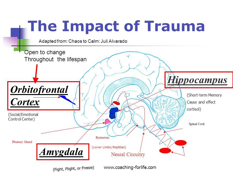trauma slide_7